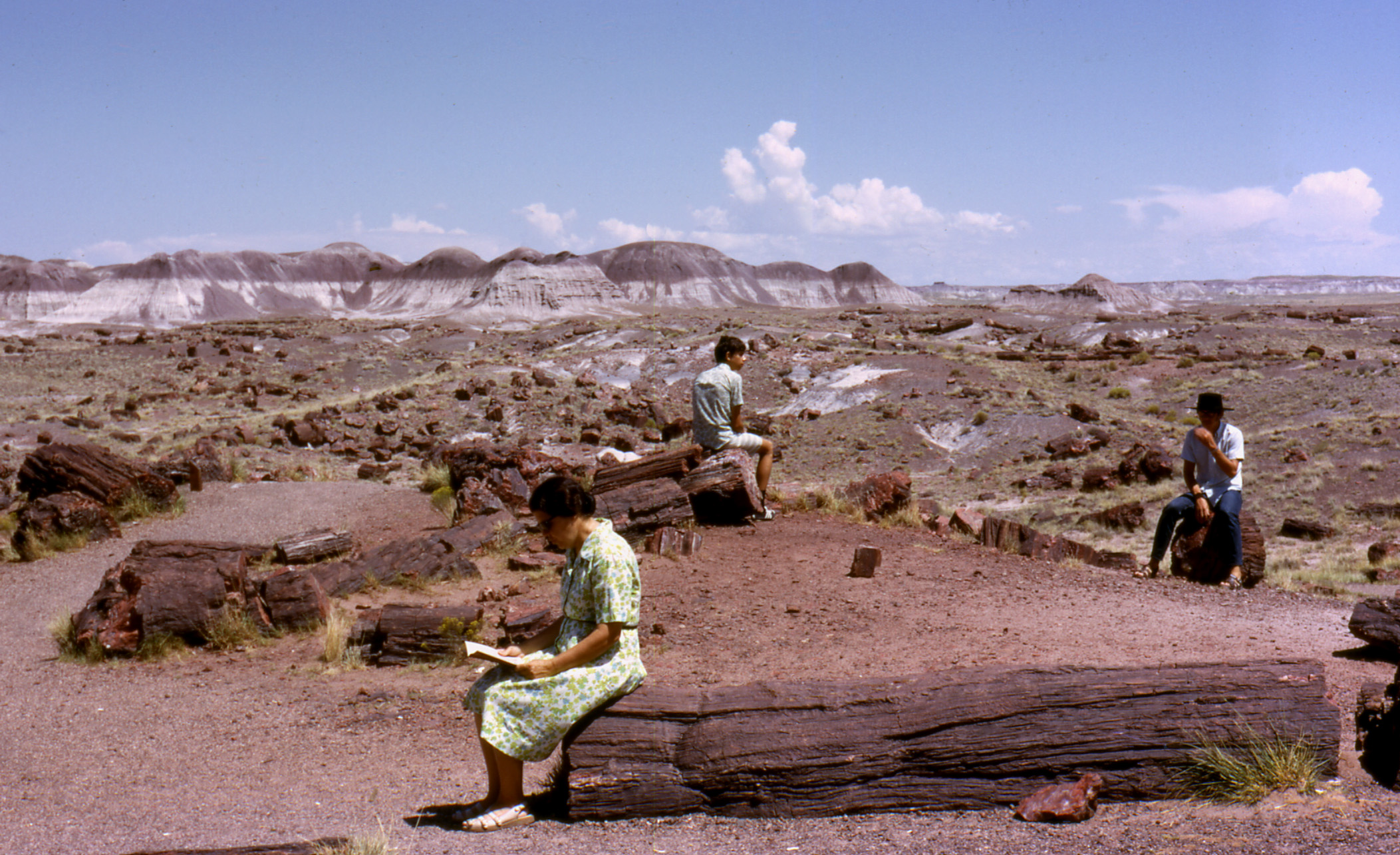 Petrified_Forest[1]